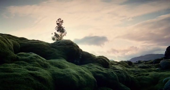 "Immagine del film ""The Tree Of Life"" di Terrence Malick del 2011"
