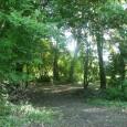 Quest'anno Giornata Oasi è dedicata alle Foreste, Oasi del mondo. Dal 1 al 24 maggio invia un SMS o chiama da fisso il 45503. Potrai donare 2 euro via SMS […]